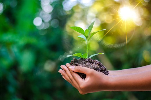 Why is Environmental Awareness Important? | Blog